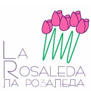 logos15